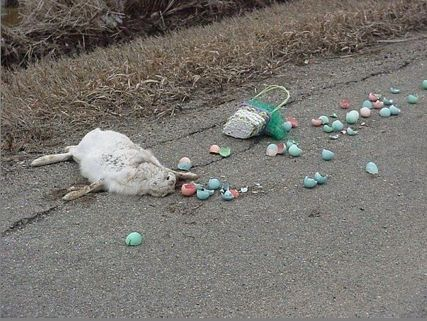 Easter Bunny didn't look both ways